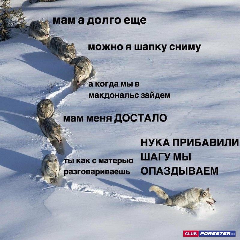 auto_16-0563f440ae3971590a1b6244db9a5e6f02.jpg