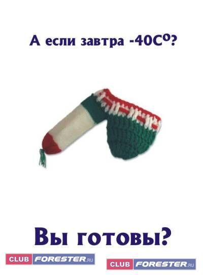 shapochka_1_.jpg