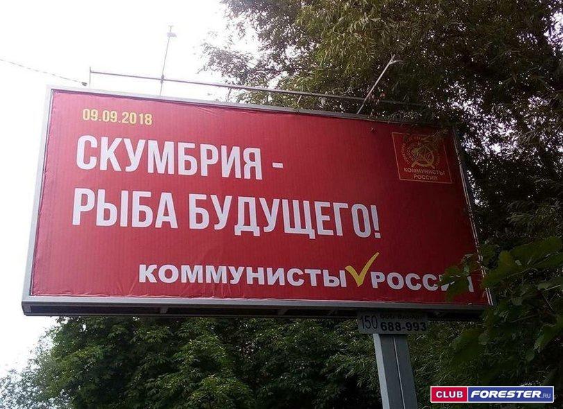 политика-коммунисты-скумбрия-4633696.jpeg
