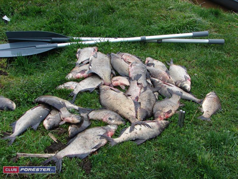 рыбалка шатурский район