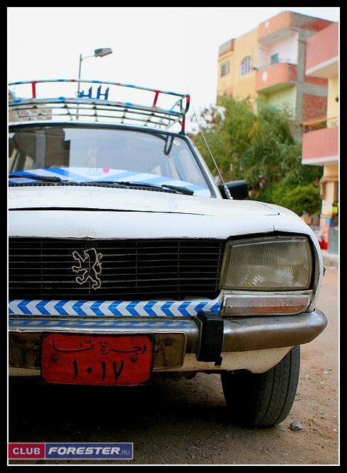 Peugeot_505.jpg